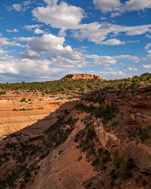 Saddlehorn View