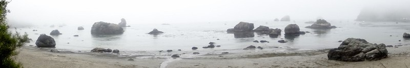 Trinidad beach, California - the tea break project solo travel blog