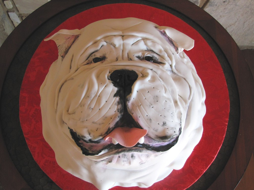 2D Bulldog Face Cake Much Much Easier Than Making A