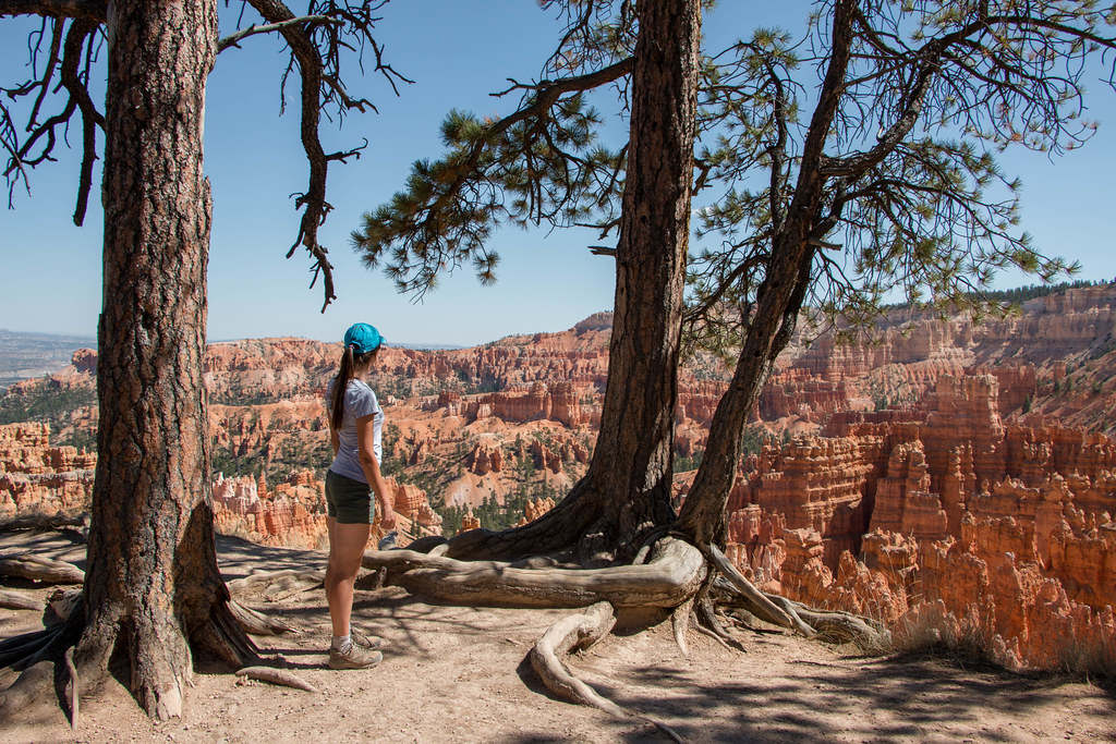 09.08. Bryce National Park