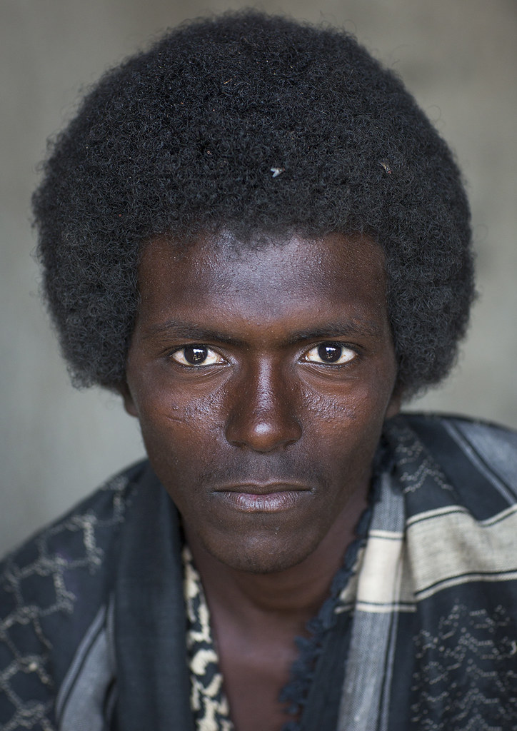 Afar Tribe Man With Afro Hair Assayta Ethiopia Www