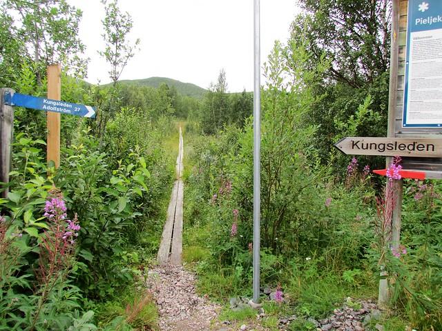 Kungsleden - Jakkvik to Ammarnas