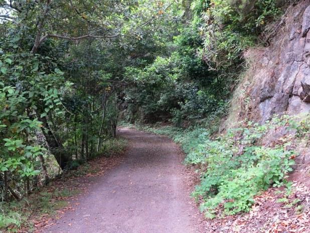 Camino Monte del Agua