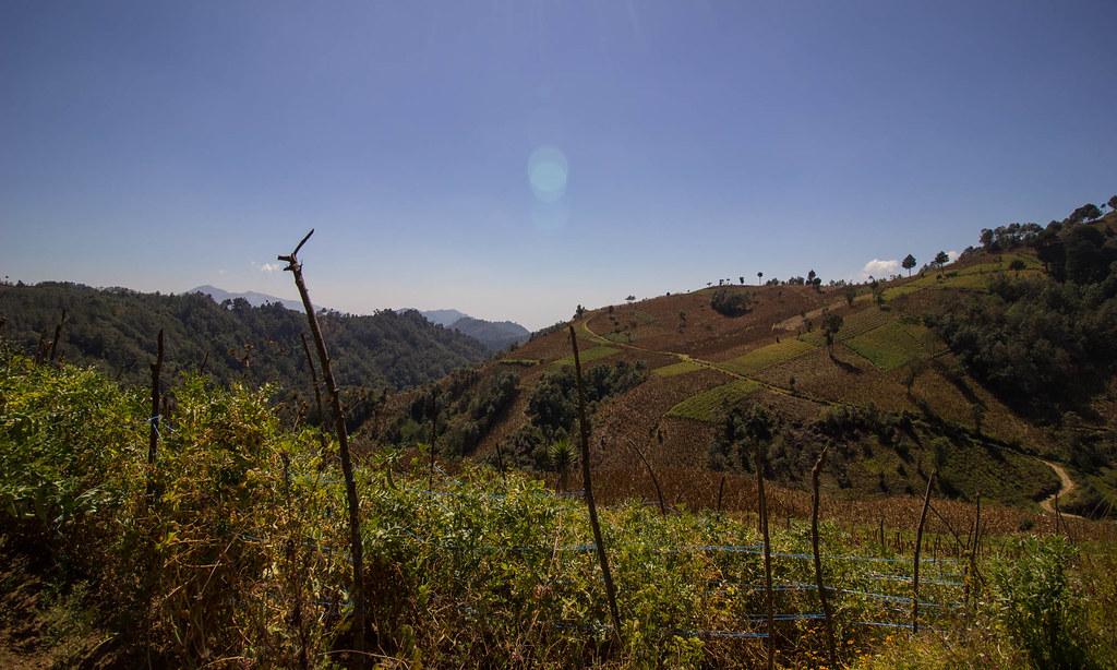 HikeFarmland