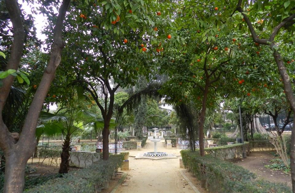 Jardines de Murillo y de Catalina de Ribera Sevilla 10