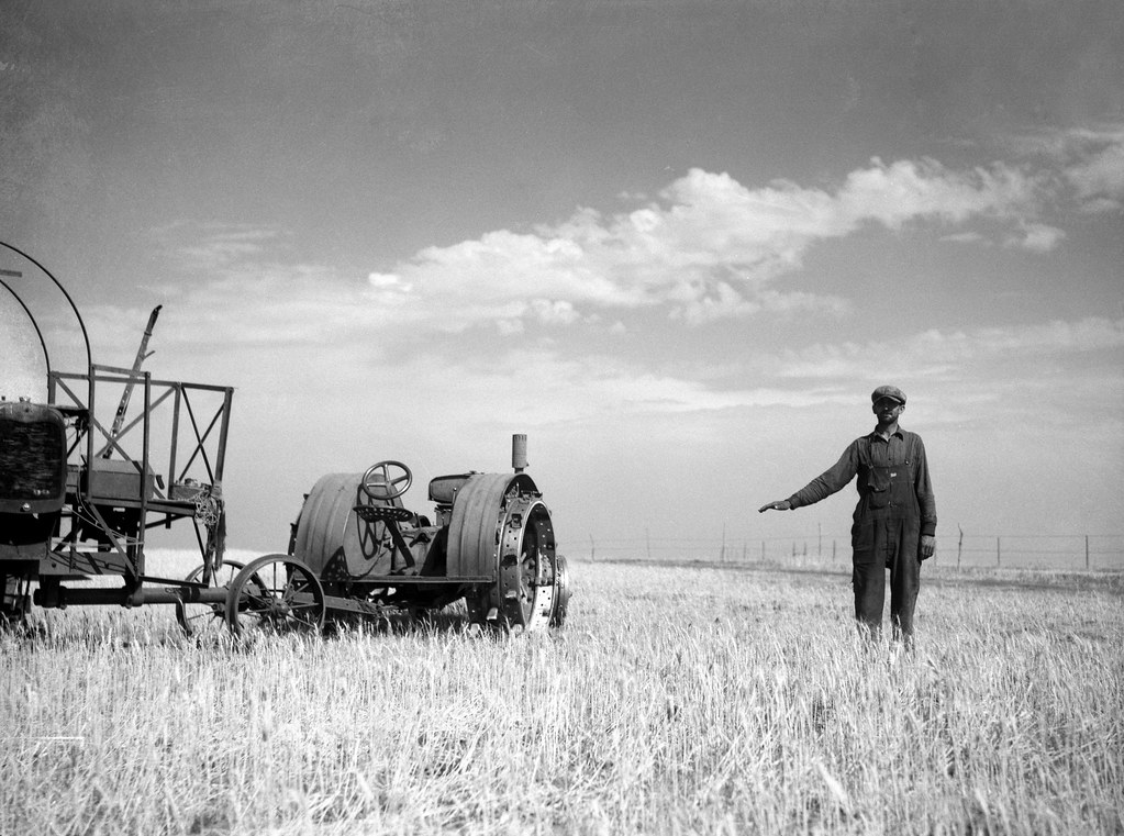 Rothstein, Arthur, photographer. John Frederick of Grant County, North Dakota, shows how high his wheat would grow if there were no drought. July, 1936.