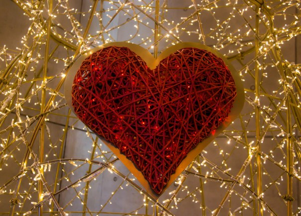 Image result for happy valentines day flickr