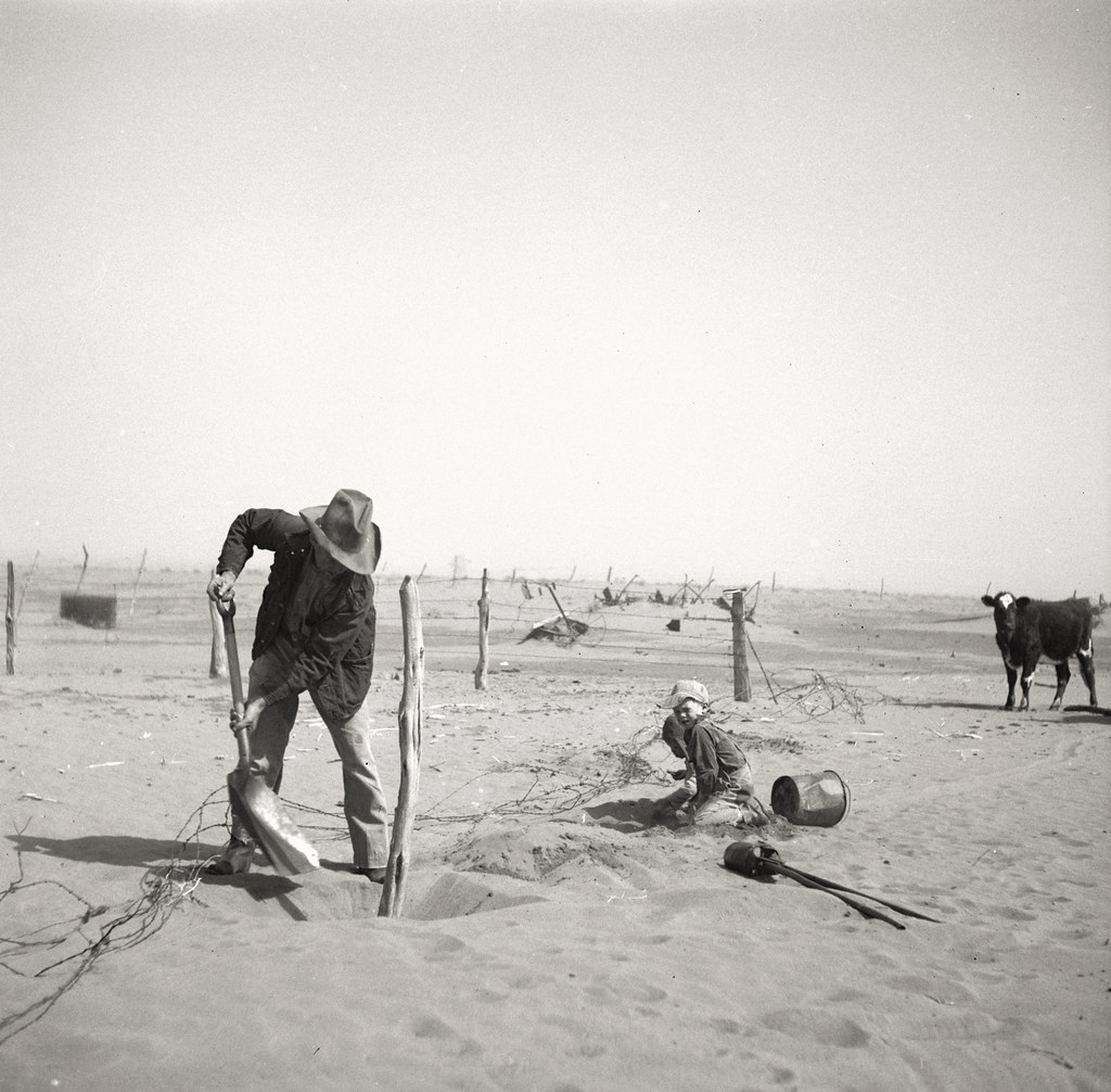 Rothstein, Arthur, photographer. Dust bowl farmer raising fence to keep it from being buried under drifting sand. Cimarron County, Oklahoma. Apr, 1936