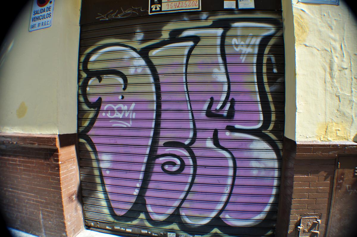 DSC_0654