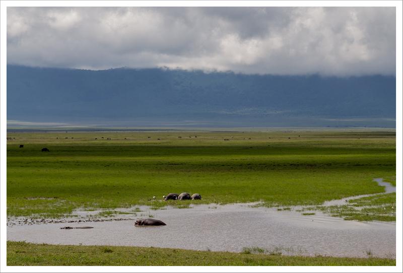 Tanzania-81
