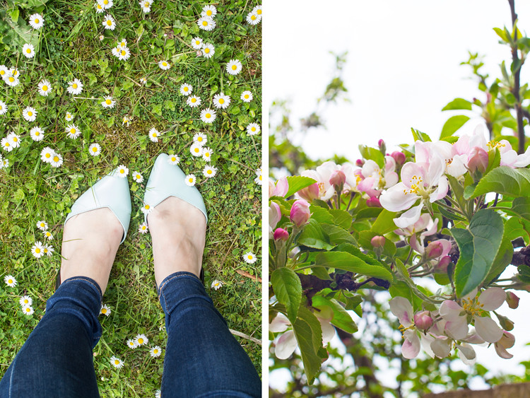 In the diary - Office shoes and apple blossom