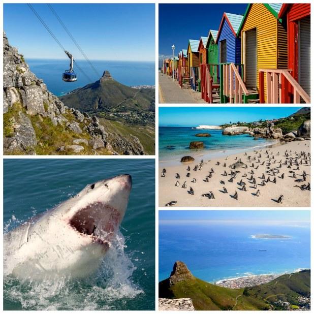 5 razones para regresar a Ciudad del Cabo