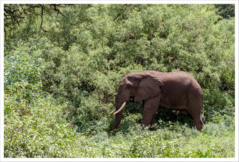 Tanzania-6