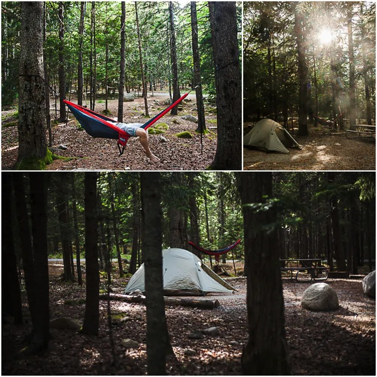 acadia national park // blackwoods campground