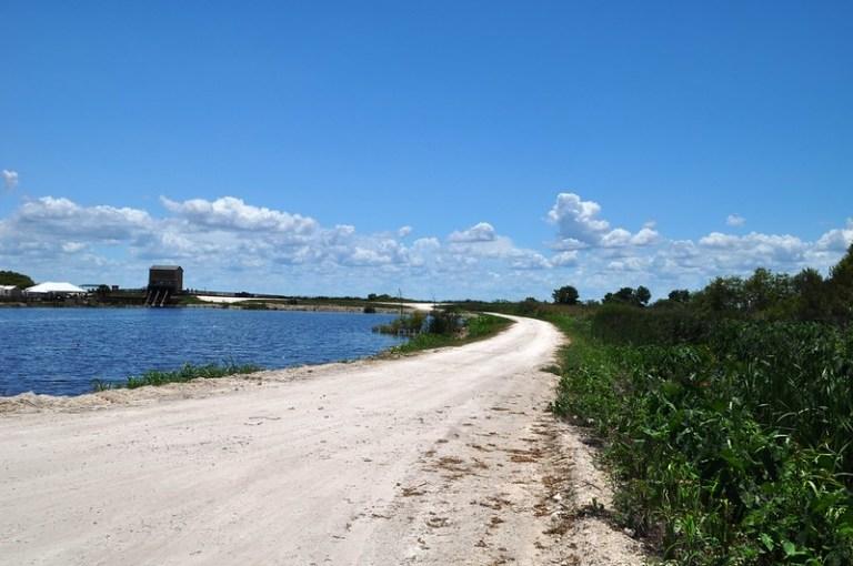 Lake Apopka Wildlife Drive, Fla., May 31, 2015
