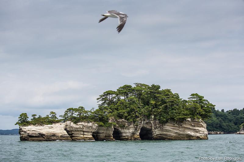 Matsushima-18