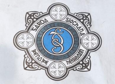Image result for gardai logo