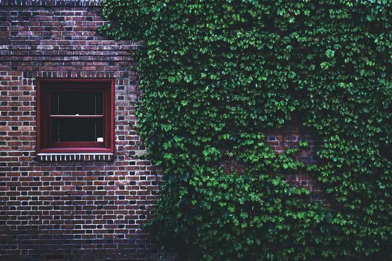 Windowpane 1080P, 2K, 4K, 5K HD wallpapers free download | Wallpaper Flare