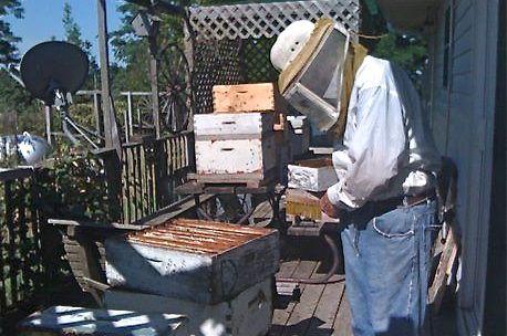 Wayne Field sells honey in Chenoa, Ill.