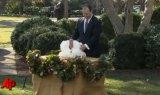 Thanksgiving Turkey Parade Obama
