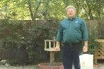Boulder Birdman - Backyard Birds