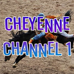Cheyenne Channel 1