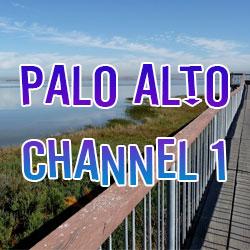 Palo Alto Channel 1