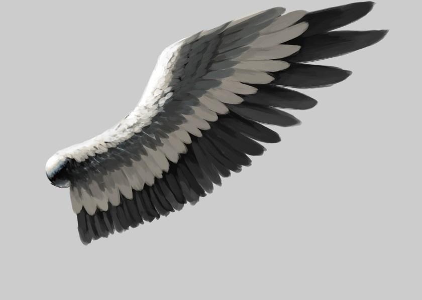 翼の実践検証4