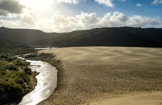 Nowa Zelandia - Giant Te Paki