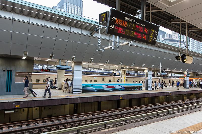 info trenes-24