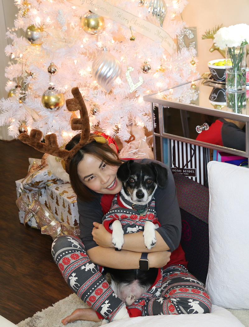 Christmas-pajamas-matching-dog-pets-8