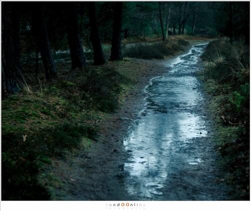 Donker weer, regen... met enige voorbereiding hoeft het geen probleem te zijn om onder deze omstandigheden te fotograferen