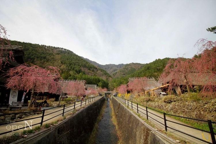 Saiko Iyashi No Sato Nenba (Healing Village)