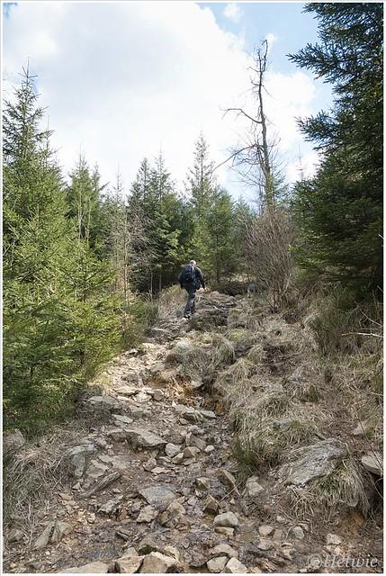 Wandelen langs de Getzbach