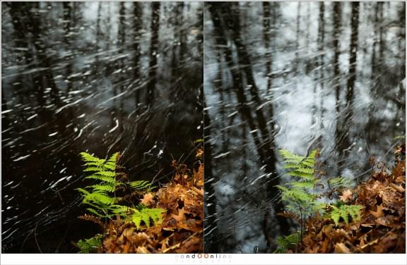 Met polarisatie (links) en zonder polarisatie (rechts) waarbij de belichting gecorrigeerd is. De reflectie is duidelijk zichtbaar (en de heldere plek waar de belichtingsmeter op reageerde) maar het maakt de foto te druk. Met polarisatie is beter (Haida PRO II C-pol)