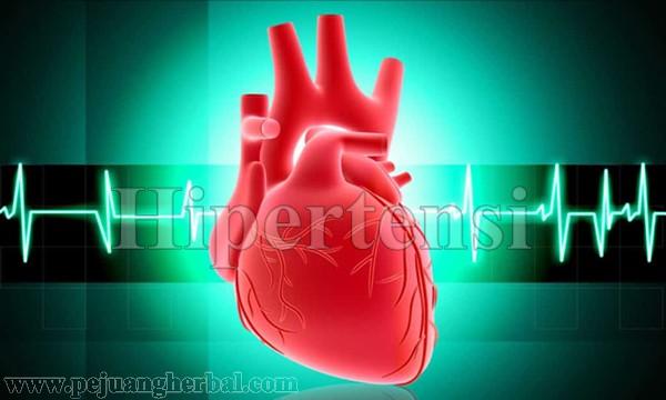 Cara Membuat Ramuan Daun Seledri Untuk Hipertensi