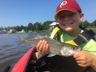Photo of Boy holding striped bass in a kayak