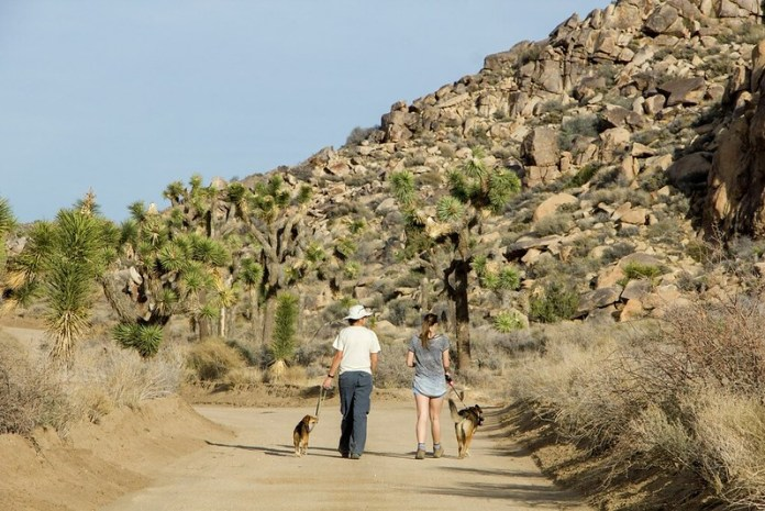 BEST PLACES TO VISIT IN CALIFORNIA