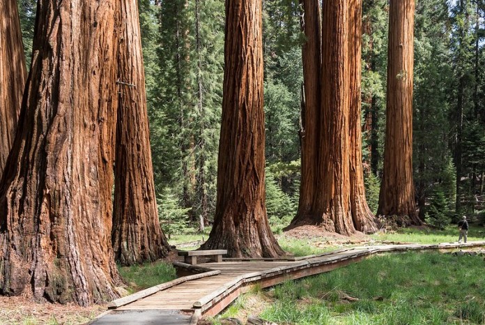cheap places to visit in california