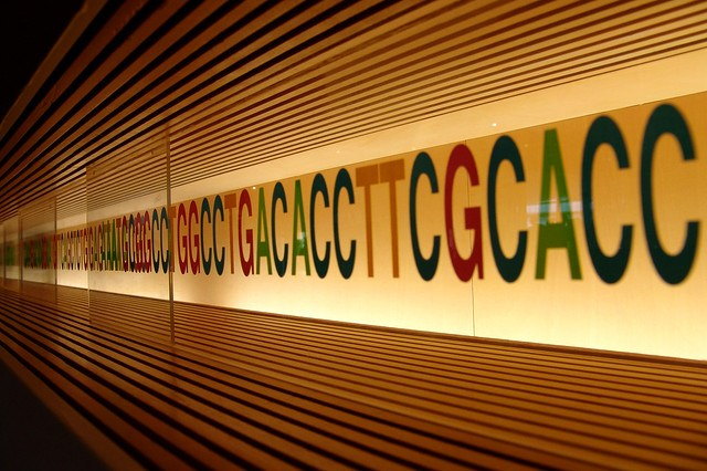 light up DNA wall