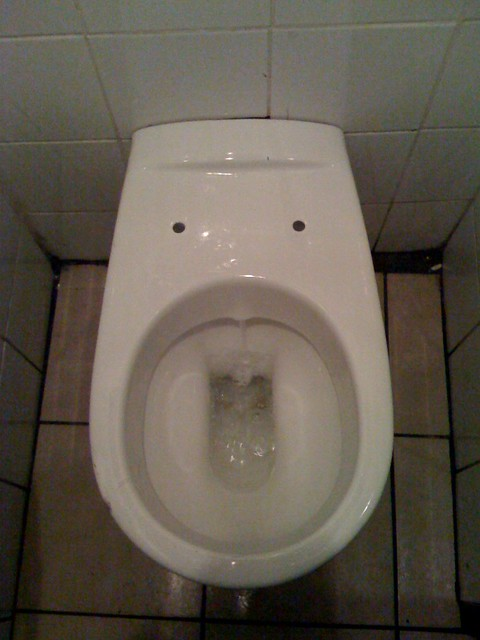 Pee/poo in my mouth   Toilet bowl at the Johnny Walsh pub ...