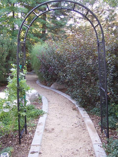 Nevada Garden July 26-27, 2008