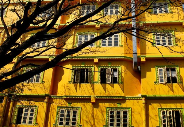 Vibrant yellow... | Different colors evoke different ...