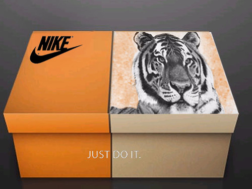 Nike Shoe Box Redesigned A Bonus Assignment Completed