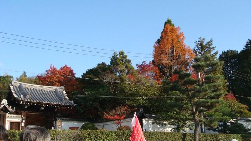東福寺 外觀