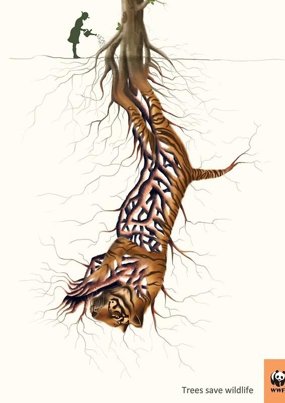 WWF - Trees Saves Wildlife Tiger