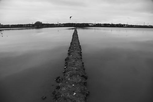 宜蘭礁溪塭底看水田、水鳥/夜間蘭陽溪出海口的祕密活動(12.5ys)