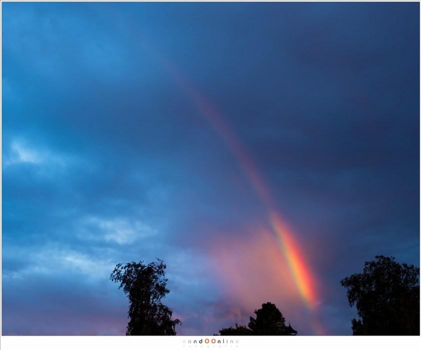Een regenboog Soms zie je maar een deel van de regenboog, en soms, heel soms, licht een klein deel heel fel op. (Canon EOS 1Dx + Ef24-70L II @ 42mm | ISO200 | f/7,1 | 1/40)