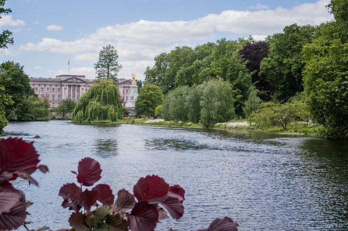 Buckingham Palace, St. James's Park