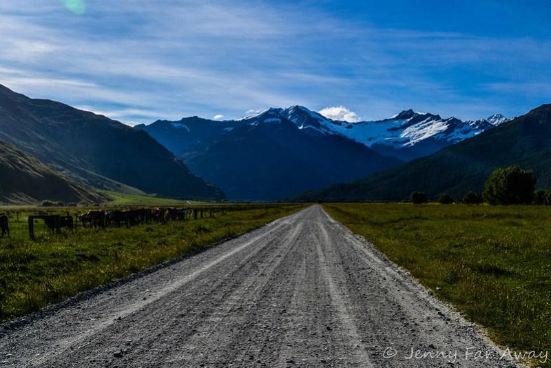 The road to the Rob Roy Glacier walk.